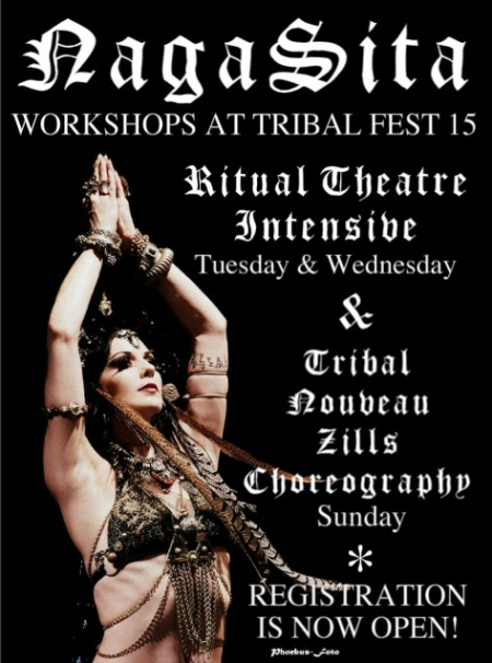 Tribal Fest Flier